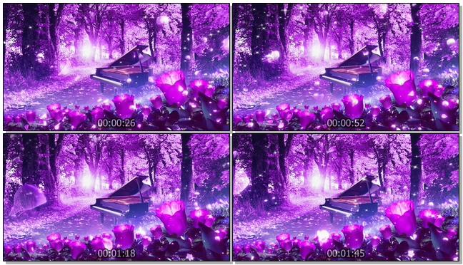 唯美梦幻的紫色花朵婚礼开场视频素材