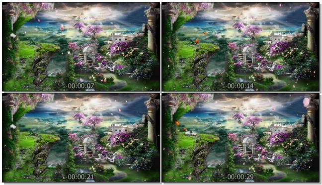唯美如仙境的婚礼开场视频素材