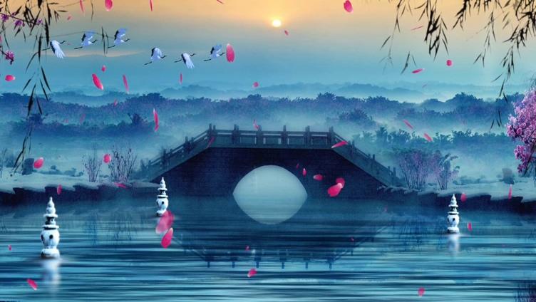 浪漫唯美的花瓣飘落到湖中的视频素材