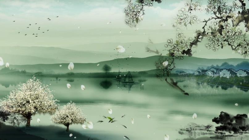 唯美梦幻的白色花瓣飘落的视频素材