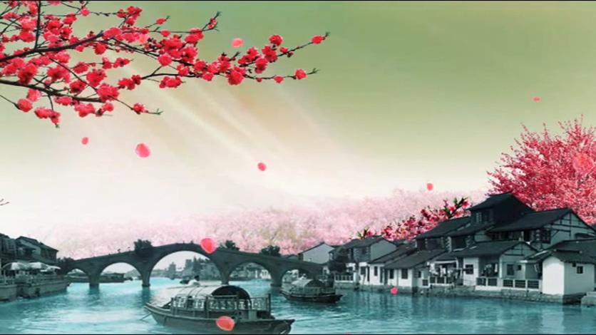 浪漫唯美的鲜花盛开水墨画视频素材