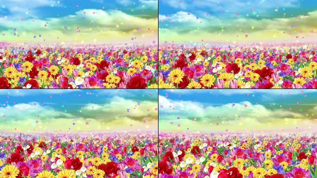 浪漫唯美的五彩斑斓的花海视频素材