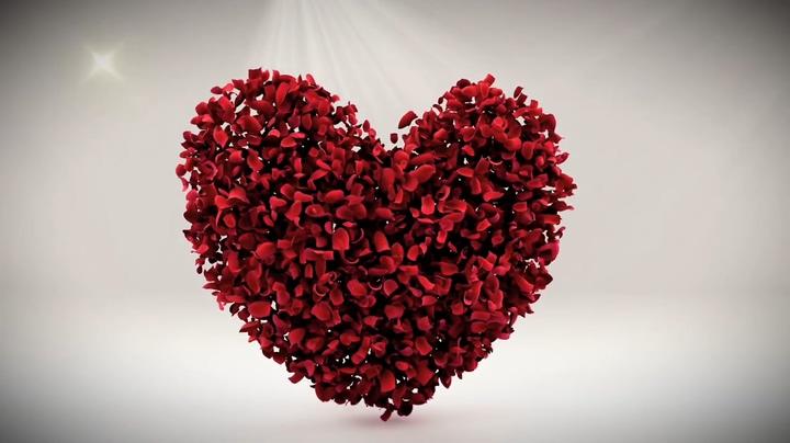 心形花瓣散落成英文字母的背景视频