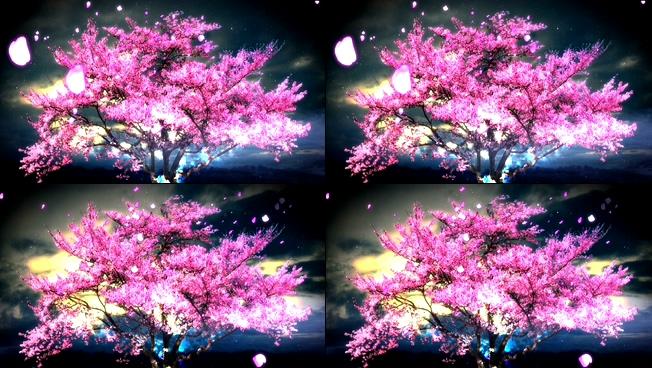 唯美浪漫桃花盛开的花瓣纷飞视频素材
