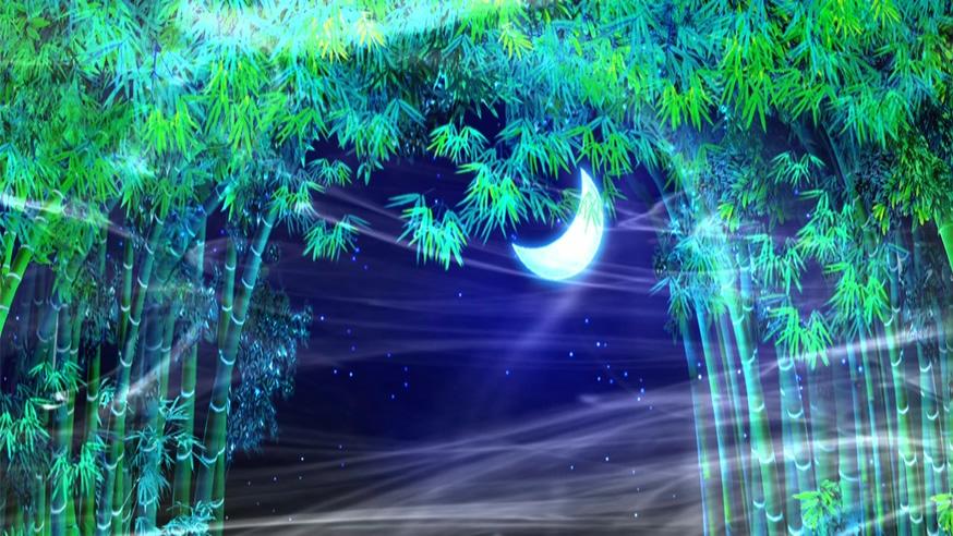 浪漫唯美的孔雀羽毛竹林月色视频素材
