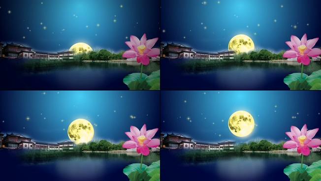 唯美浪漫的荷塘月色欢度中秋的视频素材