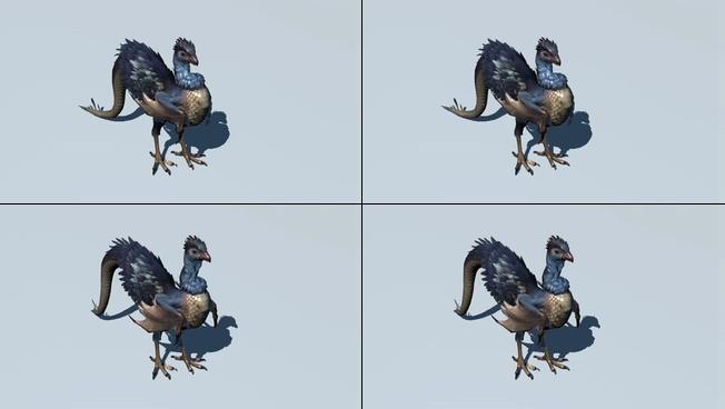 动感威猛的飞鸟展翅视频素材