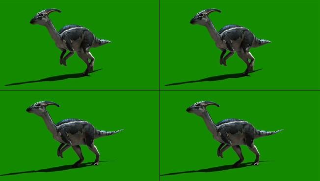 凶猛的恐龙漫步行走的视频素材