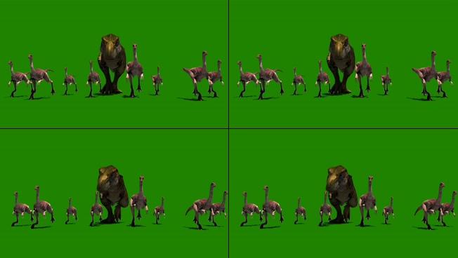 一群恐龙奋力奔跑的视频素材