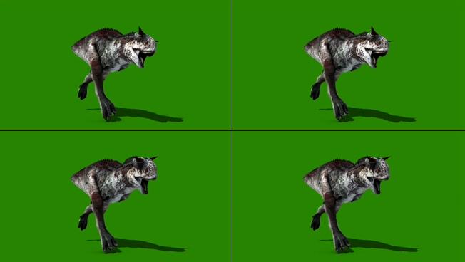 凶猛健壮的恐龙奔跑视频素材