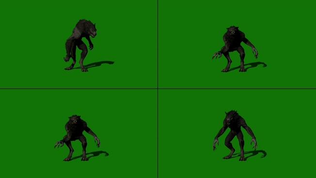 震撼霸气的黑猩猩咆哮视频素材