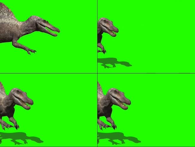 凶猛高大的恐龙漫步走过的视频素材