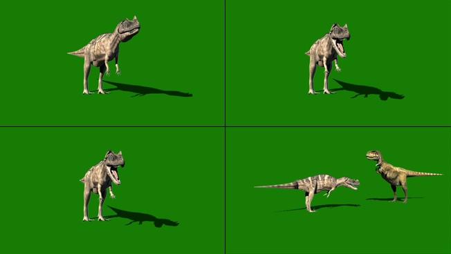 趣味动感的恐龙对峙视频素材