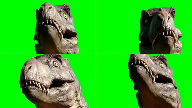 震撼大气的恐龙咆哮视频素材