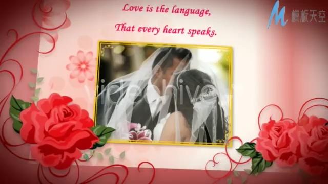 红玫瑰花瓣婚礼婚纱相册AE模板