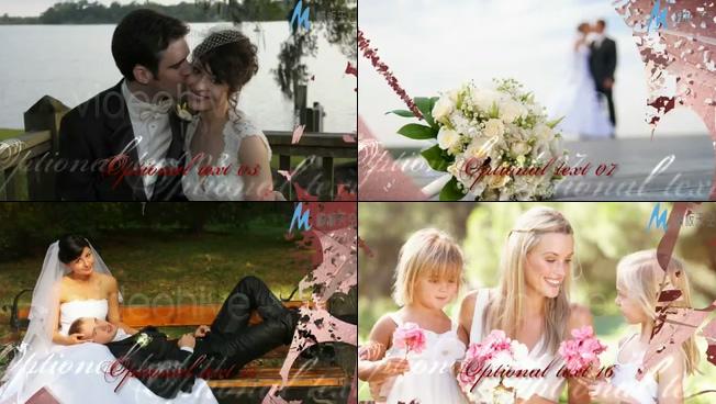 浪漫唯美的心形婚礼照片展示ae模板