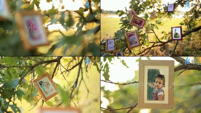 浪漫夕阳下的儿童照片展示ae模板