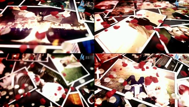 浪漫玫瑰花瓣飘落在爱情相册上的ae模板