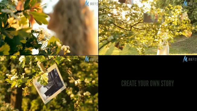 唯美梦幻的夕阳下的相册展示ae模板