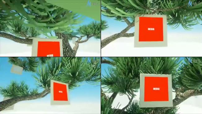 时尚照片挂在树上的宣传效果视频ae模板