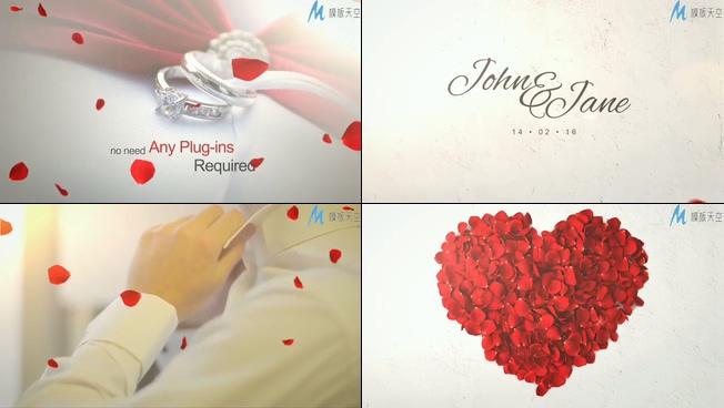 浪漫唯美的的玫瑰花瓣飘落揭示婚礼婚庆开场的ae模板