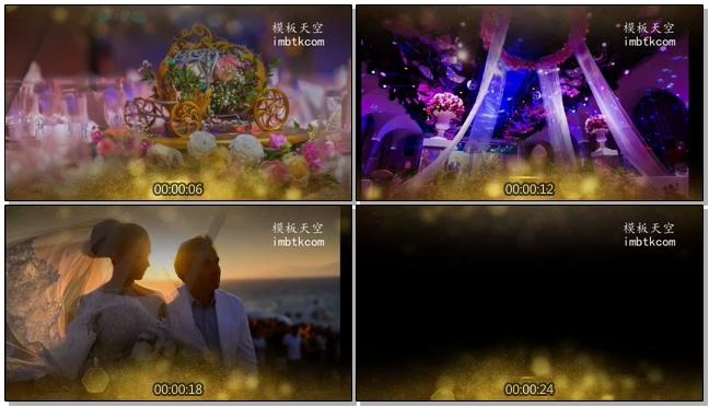 金色光效粒子婚礼动态转场视频模板