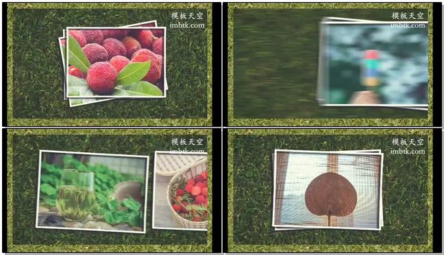 文艺清新的草地夏日风情水果相册会声会影x10模板