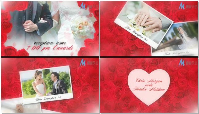 玫瑰花背景的唯美婚礼邀请预告相册视频模板