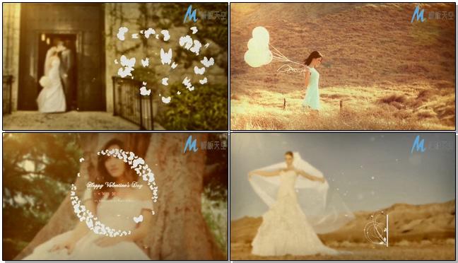 唯美韩国风格花朵标题婚礼预告片头视频AE模板