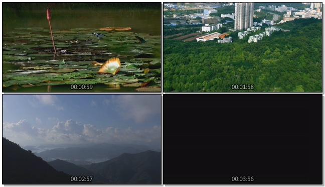 航拍深圳城市发展及文化的实拍视频
