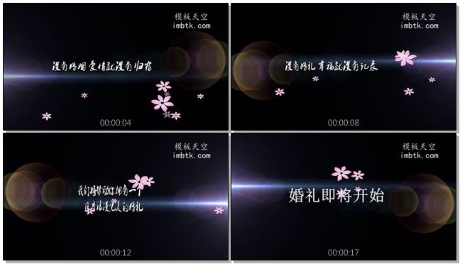 婚礼婚庆业务宣传片头视频会声会影X10模板
