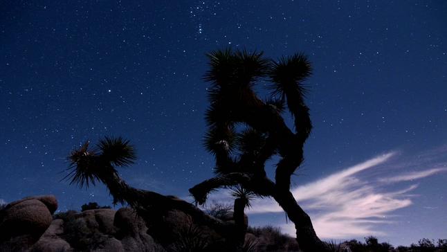 浪漫唯美的沙漠夜晚星空实拍视频