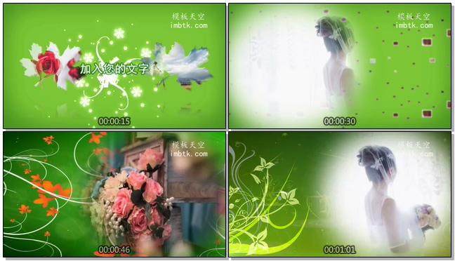 唯美梦幻的婚礼婚庆电子相册会声会影X9模板