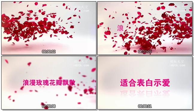 浪漫唯美的玫瑰花瓣飘散情人节告白会声会影X9模板