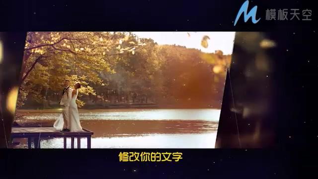 高端的金色奢华皇室婚礼宣传片头PR模板