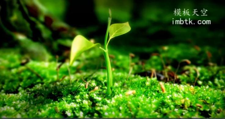 小树发芽励志奋斗的企业年会片头视频模板