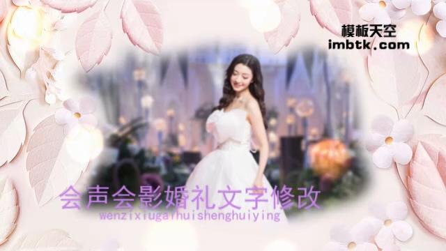 浪漫情人节婚礼相册模板
