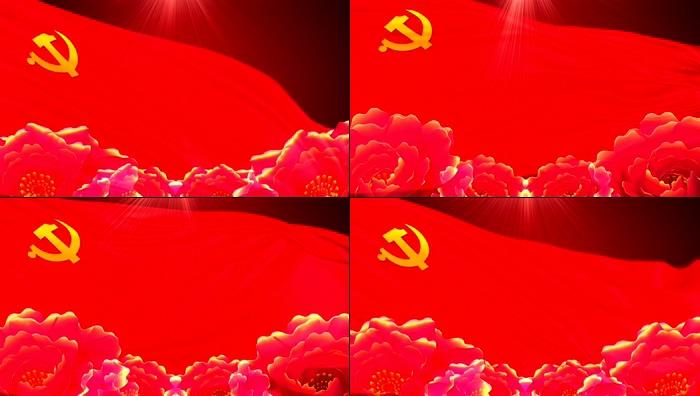 党旗牡丹视频素材